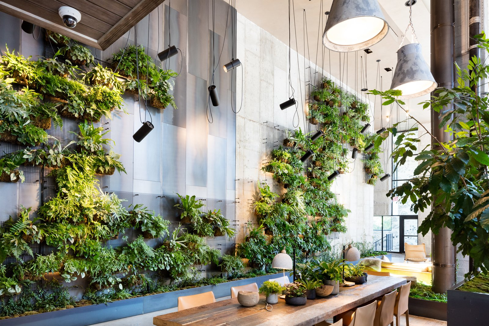 Living Green Walls 101 Their Benefits And How They Re Made Dwell