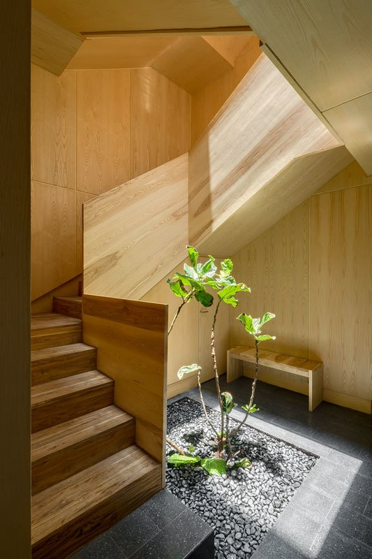 Staircase, Wood Tread, and Wood Railing Polished concrete tiles and a wooden bench furnish the entry space.  Light from above falls down onto the greenery, drawing the outdoors in.  Photo 2 of 10 in A Sculptural Wooden Staircase Steals the Show in This Mexico City Abode