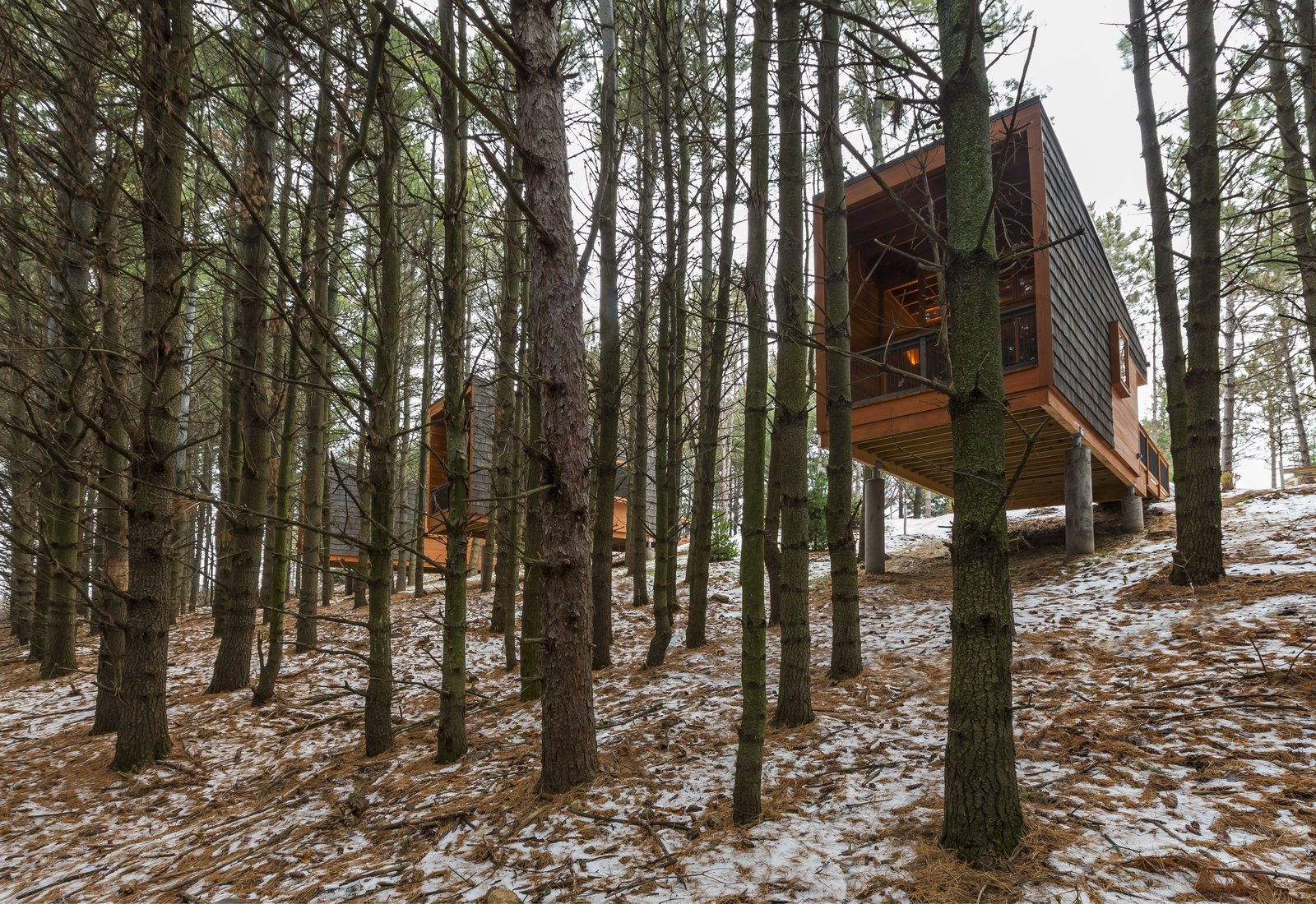 Outdoor, Woodland, Slope, and Trees The three cabins were built by high school students enrolled in a vocational training program.    Best Outdoor Slope Trees Photos from Camp in Style at This Trio of Cedar-Clad Cabins in Minnesota