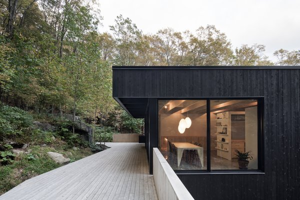 The dark-stained exterior cladding stands in contrast to the light wood decking and warm interiors.