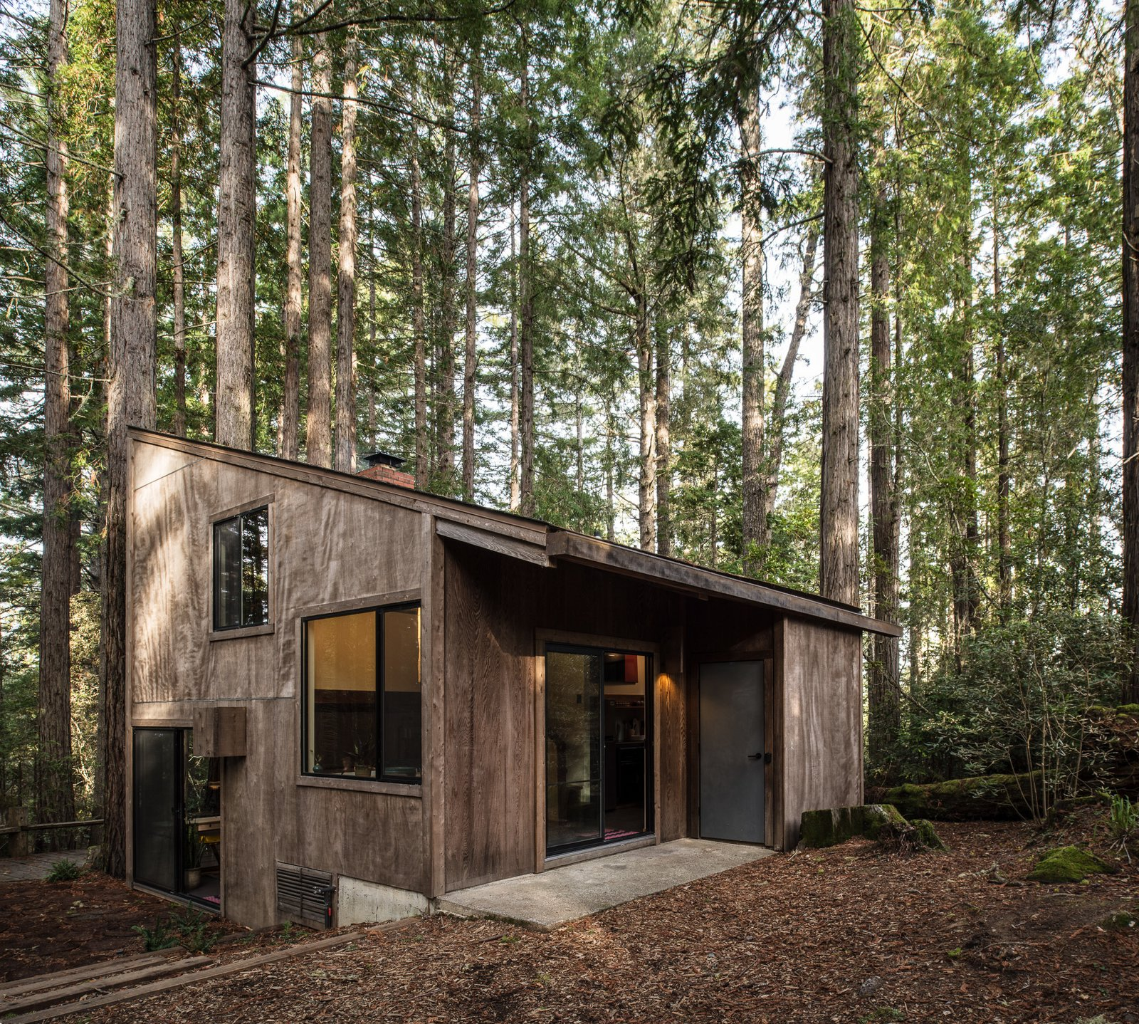 Exterior, House Building Type, Cabin Building Type, Shed RoofLine, and Wood Siding Material The wood exterior blends in quietly with the surrounding timber.  Photo 1 of 7 in A Midcentury Cabin at California's Sea Ranch Gets a Glowing Makeover