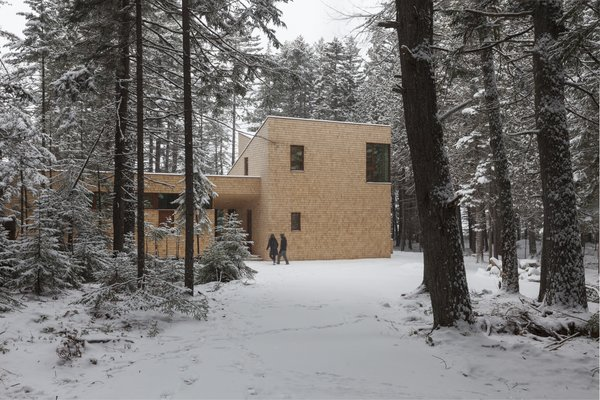 The shingled exterior will weather over time, further blurring into the forested surroundings.
