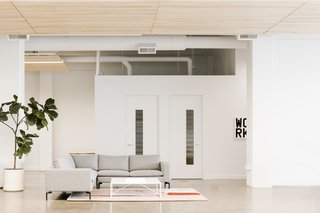 White walls and concrete floors are accented by greenery and lush lounge settings.