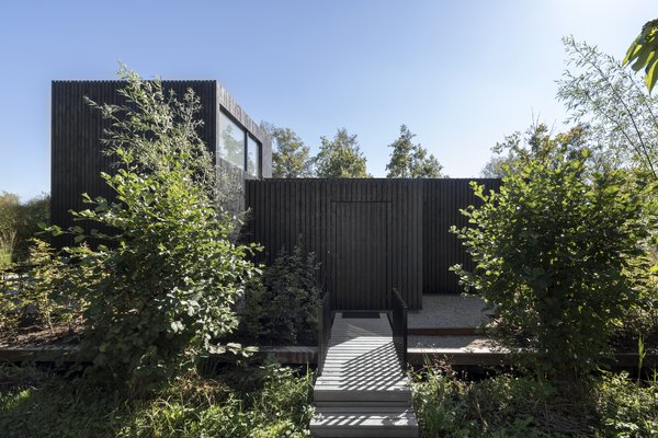 A simple boardwalk leads up to the timber-clad volume, which appears as a sculptural black box upon entry.