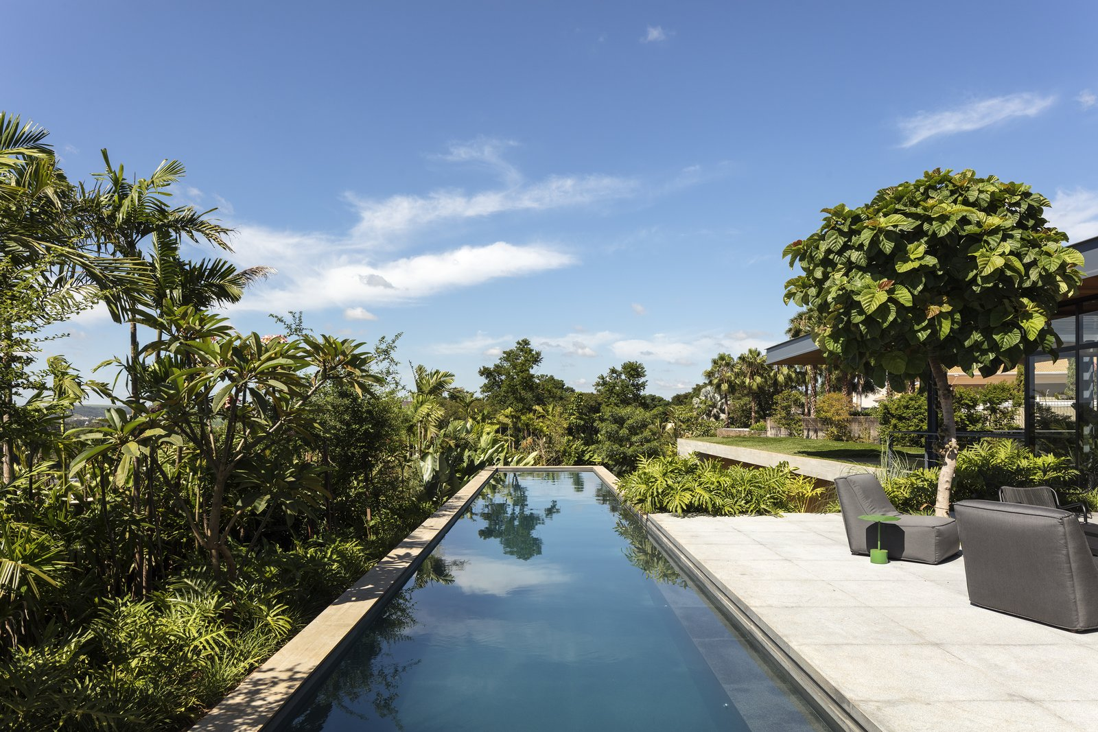 Outdoor, Concrete Pools, Tubs, Shower, Swimming Pools, Tubs, Shower, and Back Yard The linear swimming pool hovers above the hillside, disappearing into the tropical foliage.  Best Photos from A Green Roof Helps Camouflage This Striking Home in Brazil