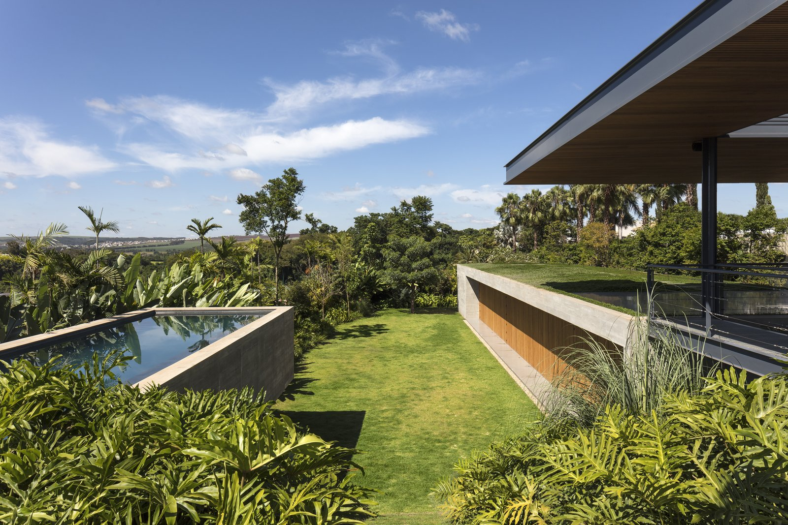 Outdoor, Gardens, Trees, Swimming Pools, Tubs, Shower, Concrete Pools, Tubs, Shower, and Back Yard A green roof further blends this hillside home into the landscape, while providing thermal comforts for this warm climate.   Photo 8 of 12 in A Green Roof Helps Camouflage This Striking Home in Brazil