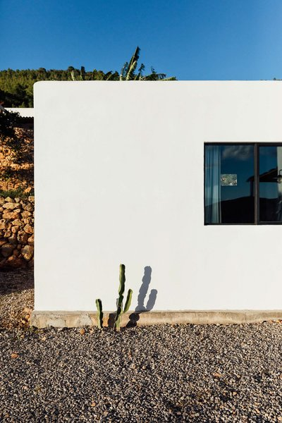 Indigenous plantings, suitable for the warm climate, surround the simple massing. The blue sky is a powerful contrast to the white plastered walls.