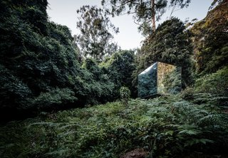 The mirrored box disappears into the hillside, reflecting the dense foliage.