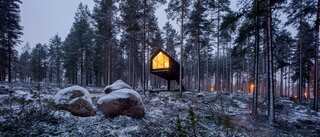 This Cozy Cabin Stands Above the Forest Floor on a Single Leg