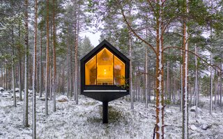 The simple architecture poses minimal disturbance to the natural growth of the forest.