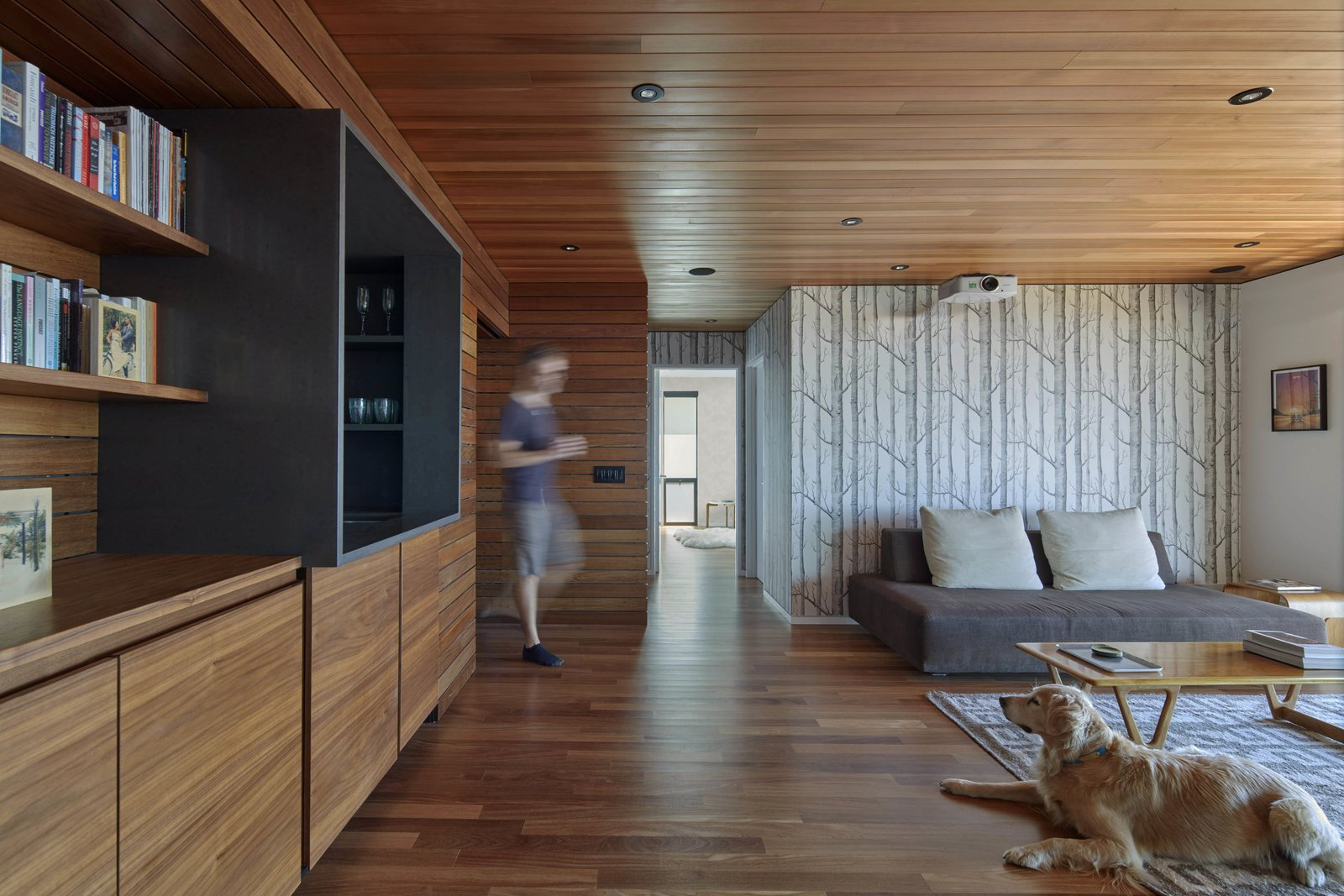 Shed & Studio and Home Theater Room Type Projection room  Skyline House by Terry & Terry Architecture