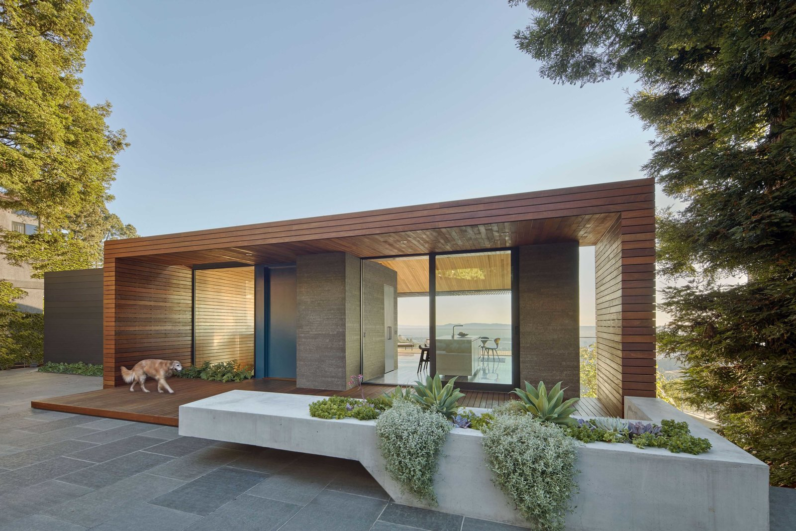 Front outdoor area Tagged: Outdoor, Front Yard, Shrubs, Trees, Hardscapes, Grass, Small Patio, Porch, Deck, Gardens, Raised Planters, Landscape Lighting, and Metal Fences, Wall.  Skyline House by Terry & Terry Architecture