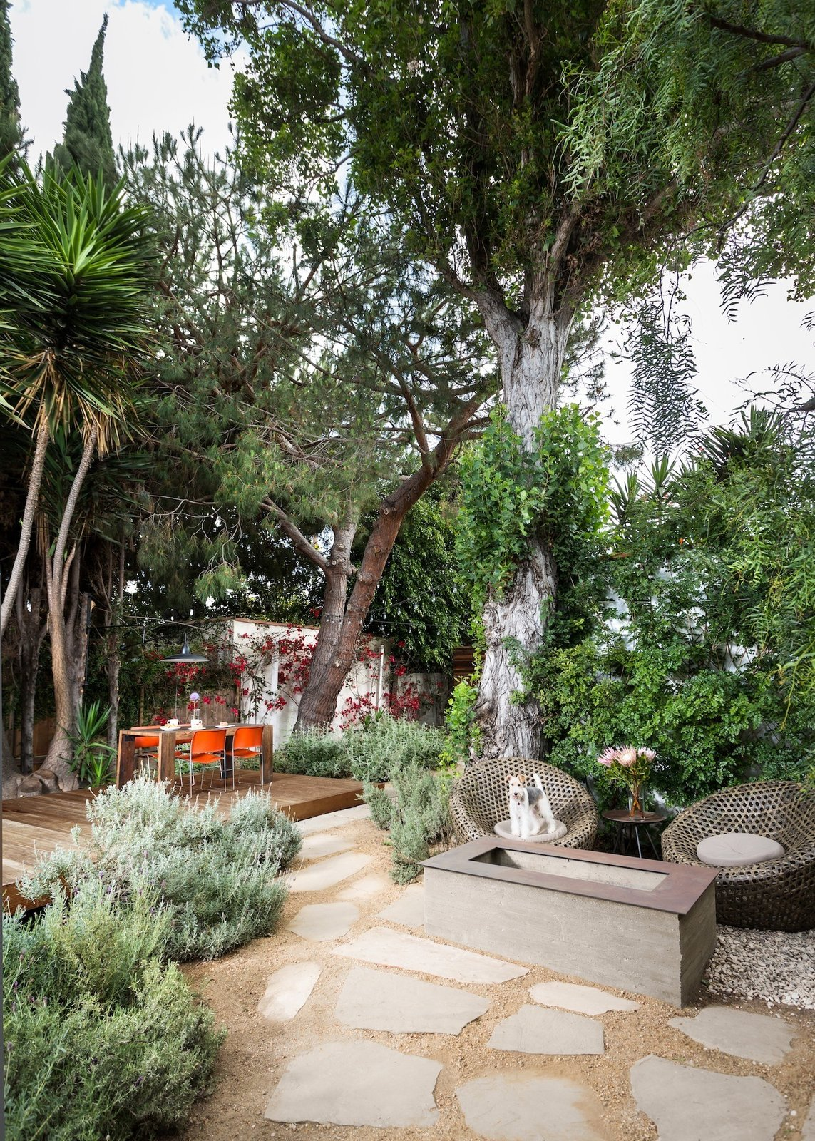 Outdoor, Desert, Garden, Trees, Back Yard, Shrubs, Hardscapes, Gardens, Large, Wood, Flowers, Decomposed Granite, Walkways, Decking, Pavers, Wood, and Hanging Firepit and wire fox terrier with hardscape and landscape to exterior dining terrace at raised deck beyond  Outdoor Desert Shrubs Garden Hanging Pavers Photos from Boise Residence