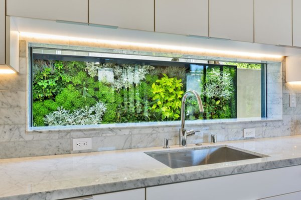 Kitchen View Exterior Living Green Wall