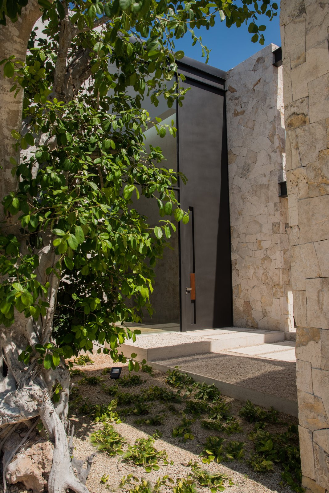 Outdoor, Front Yard, and Trees Main entrance  Casa Chaaltun by tescala