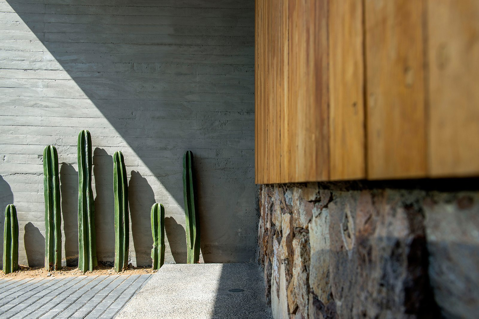 Outdoor, Front Yard, Hardscapes, Gardens, and Flowers Front Yard Vegetation  Casa MA by e|arquitectos