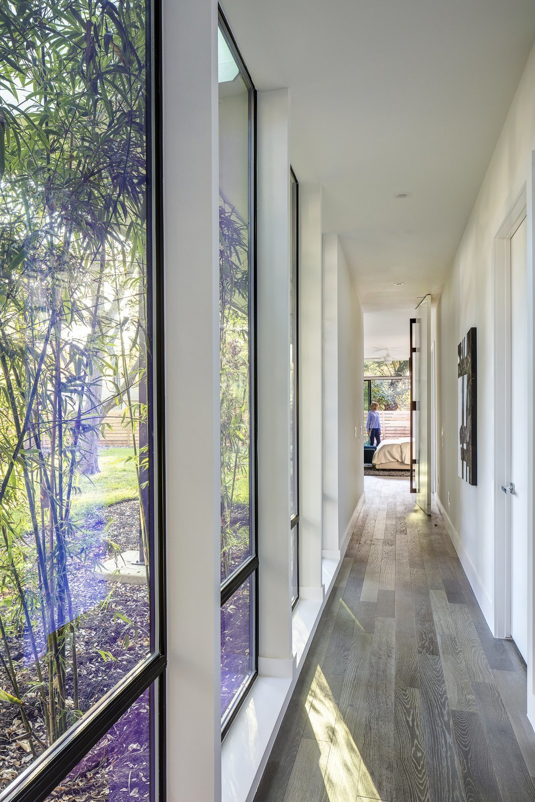 Windows, Picture Window Type, and Metal Hallway  Strass I by Sett Studio