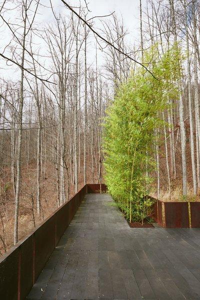 'Tree House' - Bamboo Terrace