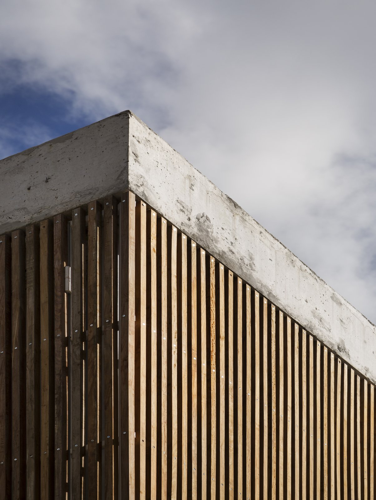 Outdoor, Wood Patio, Porch, Deck, Concrete Patio, Porch, Deck, and Wood Fences, Wall Detail  Casa Plaza by mass arquitectos