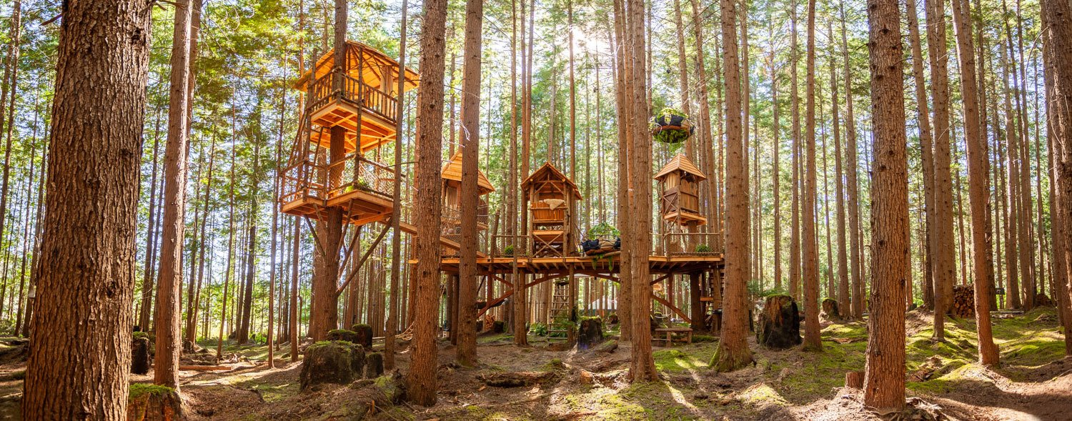 Picture of: How Tree House Master Pete Nelson Built An Empire In The Woods Dwell