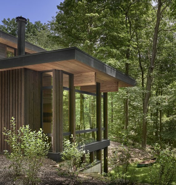 The giant windows make you feel as if you are standing amidst the tree canopy.