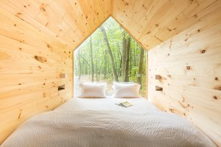 Inside the cabins, giant windows provide views of the lush tree canopy.