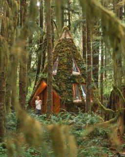 The cozy hexagonal cabin has a footprint of just 93 square feet.