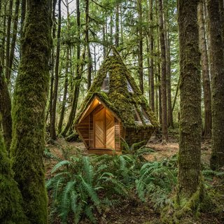 Clad in salvaged wood and adorned with moss, the tiny hexagonal home has a footprint of 93 square feet.