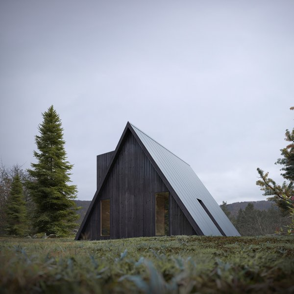 Photo 10 Of 4163 In Exterior Wood Photos From A Diy Cabin Brand Is Selling 99 A Frame Plans Dwell