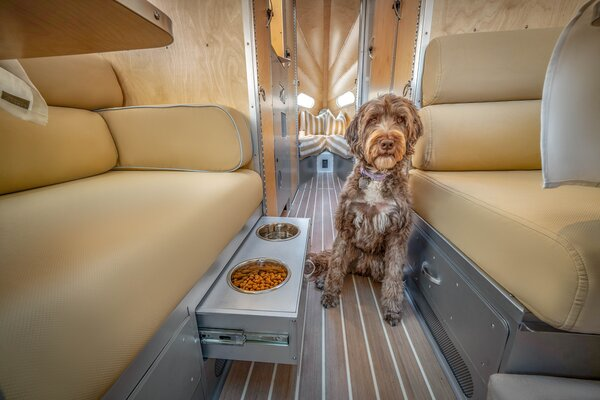 The new interior also was designed with furry friends in mind.