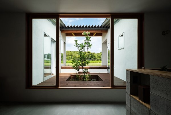 A view of the courtyard from the living room.