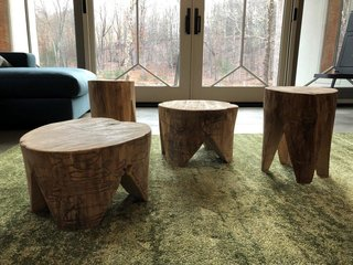 Stools made of fallen ash wood show the path of the emerald ash borers that claimed the trees.