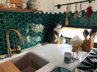 Beautiful geometric tiling in the kitchen.