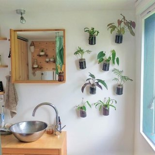 With an abundance of natural light, their space is filled with plants.