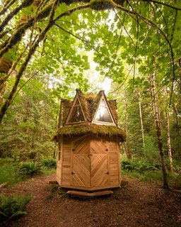 The octagon cabin that they call home.