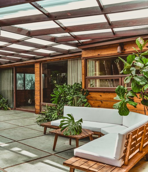 The backyard is an outdoor sanctuary filled with foliage and natural wood.