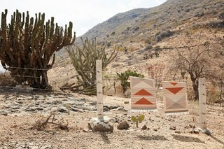 Wild Geese Rugs in Peach echo the landscape in color and composition.