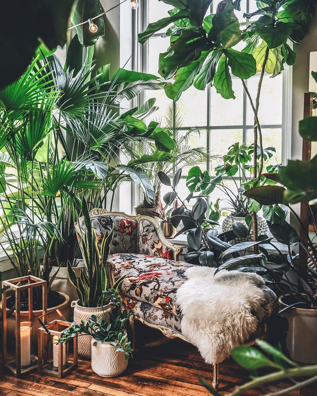Living Room, Sofa, and Dark Hardwood Floor Luxe glam exuds  Best Photos from 10 Plant-Filled Abodes You Should Follow on Instagram Right Now