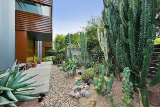 Entry with cactus garden