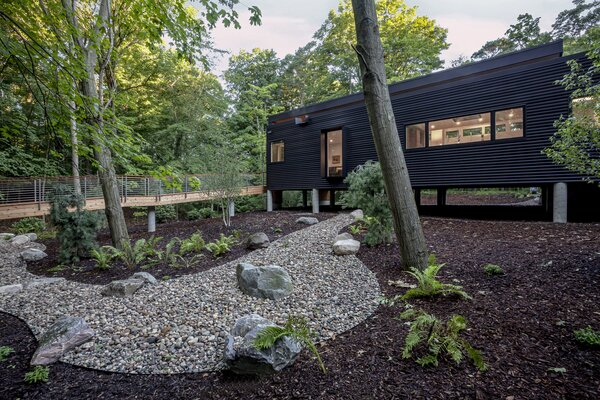 House elevates to respect existing grades, drainage, and wildlife.