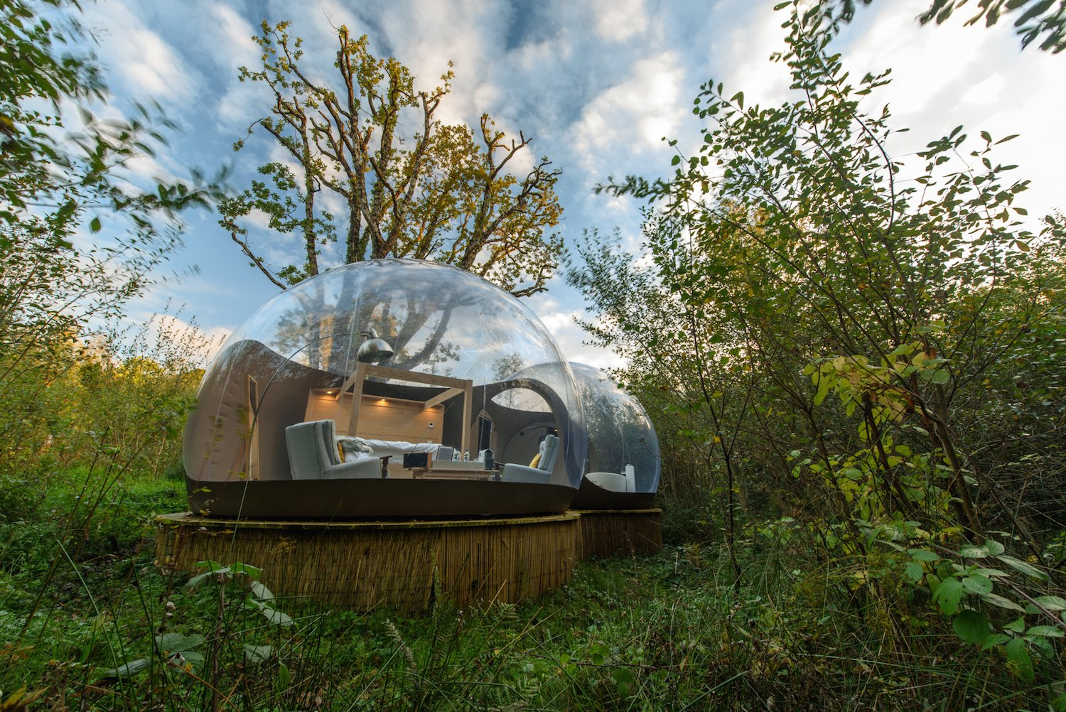 Bedroom, Bed, Chair, and Floor Thoughtful furnishings provide luxury in the middle of nature.  Best Bedroom Bed Floor Photos from Sleep Beneath the Stars in These Enchanting Bubble Domes in Ireland