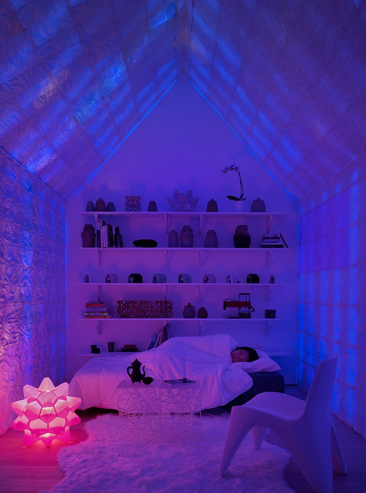 Bedroom, Bed, Shelves, Rug Floor, Light Hardwood Floor, Floor Lighting, and Chair The 3D-printed pink Picoroco lamp serves as a night lamp.  Photo 9 of 12 in This 3D-Printed Tiny Cabin Offers a Creative Response to the Bay Area's Housing Crisis