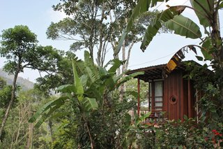 These Perched Cabins in India Will Stimulate All Your Senses