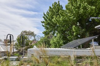 The native green roof is irrigated using the Rachio smart sprinkler controller, which is set to an automated water schedule.