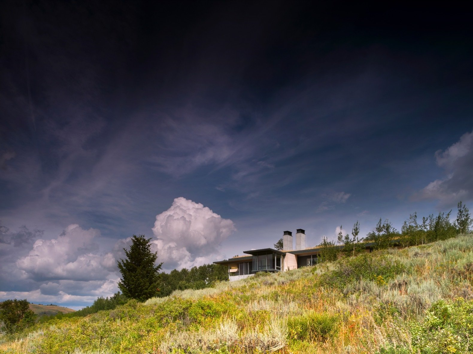 Exterior, House, Wood, Metal, Metal, Concrete, Flat, and Green To meld the building with the landscape, the architects expanded the aspen grove around the southern approach to the structure.    Best Exterior Green Metal Photos from A Modern House Accentuates a Sensational Wyoming Landscape