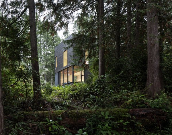 The dark cladding helps recede the simple, boxy home into the lush forest.
