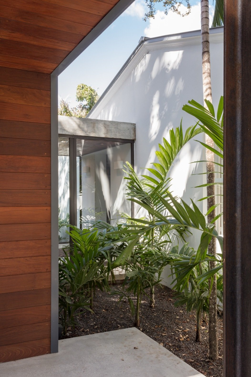 Outdoor, Side Yard, Trees, Grass, Small Patio, Porch, Deck, and Concrete Patio, Porch, Deck A glazed vestibule connects the new addition with the renovated bungalow.   Photo 11 of 21 in A Minimalist Bungalow in Miami Welcomes a Sleek New Addition
