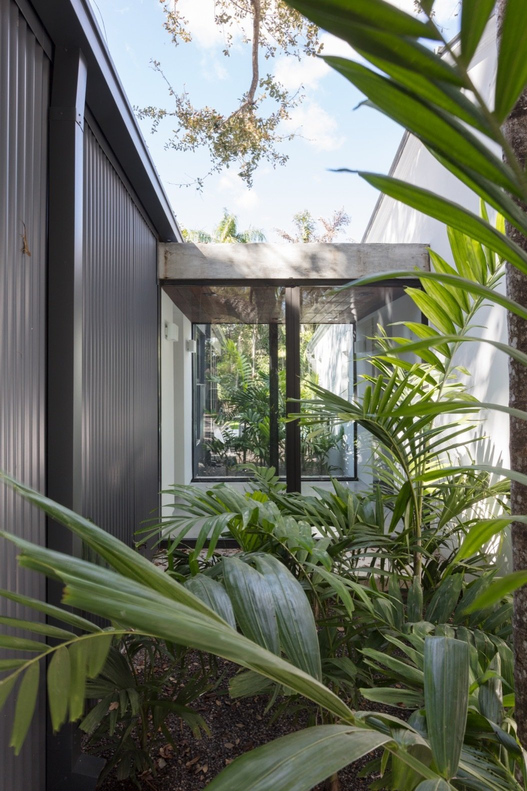 Outdoor and Gardens Gardens planted on both sides of the vestibule provide privacy, as well as an immersive jungle-like experience.    Photo 12 of 21 in A Minimalist Bungalow in Miami Welcomes a Sleek New Addition