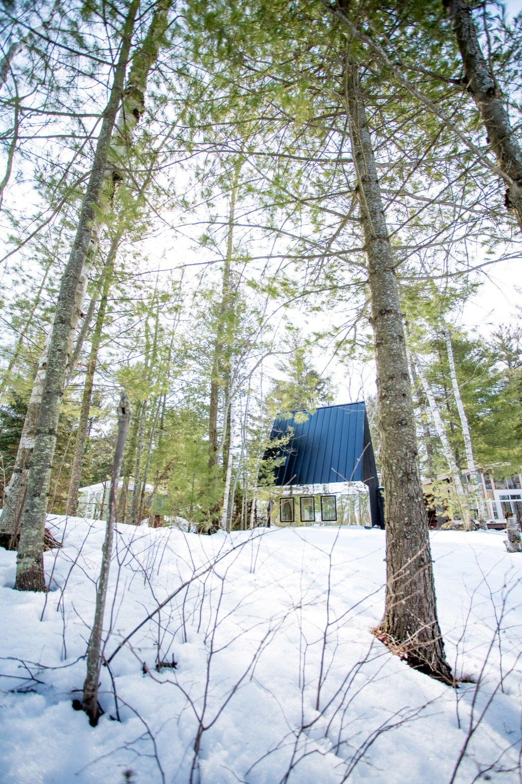 Exterior, Gable RoofLine, Metal Roof Material, Cabin Building Type, Metal Siding Material, and Glass Siding Material The cabin is surrounded by a thick forest of birch and spruce.