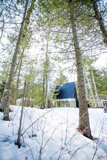 The cabin is surrounded by a thick forest of birch and spruce.